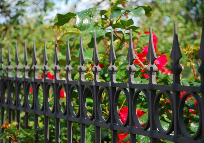 burgular-proof-property-metal-fence-and-prickly-plant-in-hampshire