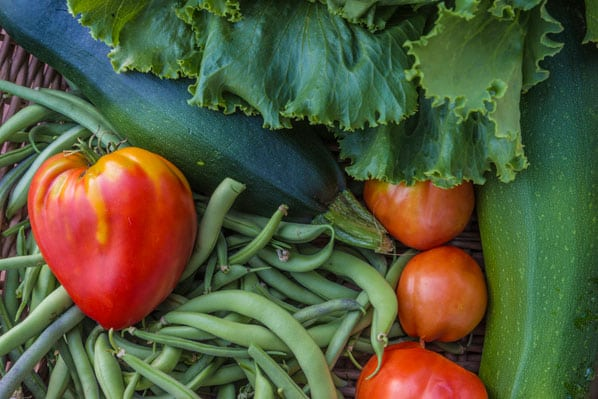 end-of-summer, garden-tips, autumn harvest