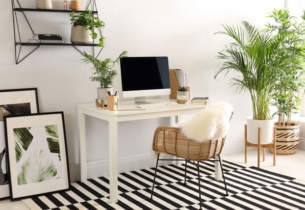 stylish working at home decor