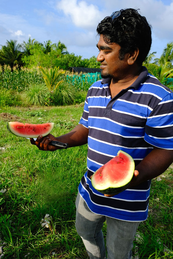 Maldives farm to fork