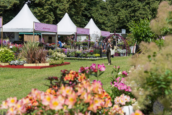 2020 garden shows and festivals